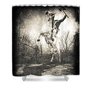 Sleepy Hollow Headless Horseman Shower Curtain