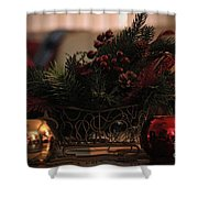 Sleigh Shower Curtain