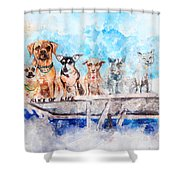 Slice Of Life Watercolor Shower Curtain by Michael Colgate