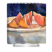 Slices Shower Curtain