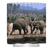 Slight Disagreement Shower Curtain