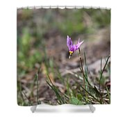 Slimpod Shooting Star Shower Curtain