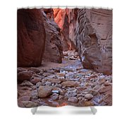 Slot Canyon Reflections Shower Curtain