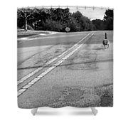 Slow Down- Stop Sign Ahead Shower Curtain