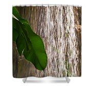 Slow Motion Tropical Waterfall Shower Curtain