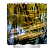 Slow Moving Stream - 2959 Shower Curtain