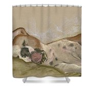 Slumbering Grace Shower Curtain