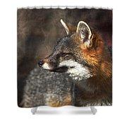 Sly As A Fox Shower Curtain