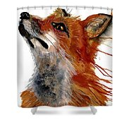 Sly One Shower Curtain