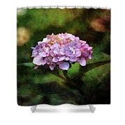 Small Blossoms 2388 Idp_2 Shower Curtain