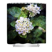 Small Blossoms 4948 Idp_2 Shower Curtain