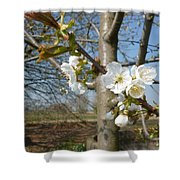 Small Blossoms Shower Curtain