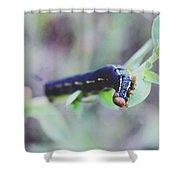 Small Bug Shower Curtain