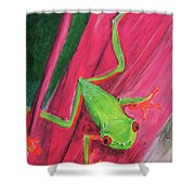 Small Frog Shower Curtain