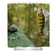 Small Fry Shower Curtain