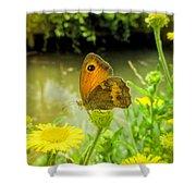 Small Heath Butterfly Shower Curtain