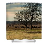 Small Herd In Winter Shower Curtain