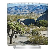 Small Joshua Tree Shower Curtain