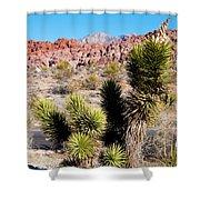 Small Joshua Tree Shower Curtain