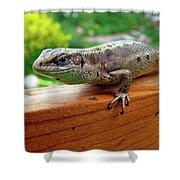 Small Lizard Shower Curtain