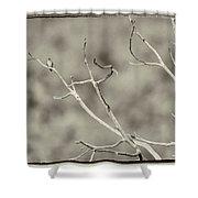 Small Lonesome Bird Shower Curtain