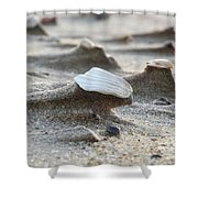Small Monuments Shower Curtain