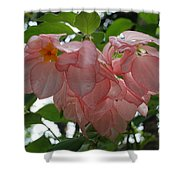 Small Orange Flower Pink Heart Leaves Shower Curtain