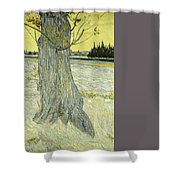 Small Pear Tree In Blossom Arles, April 1888 Vincent Van Gogh 1853  1890 Shower Curtain