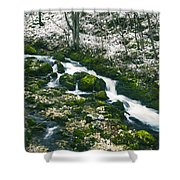 Small River In Forest In Winter Shower Curtain