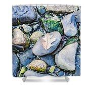 Small Rocks On The Beach Shower Curtain