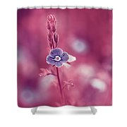 Small Romantic Violet Flower Shower Curtain