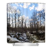 Small Stream In Spring Shower Curtain
