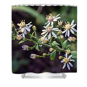Small Town Blues 2 Shower Curtain