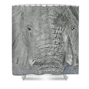 Small Tusks Shower Curtain