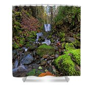 Small Waterfall At Lower Lewis River Falls Shower Curtain