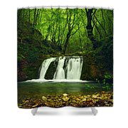 Small Waterfall In Forest Shower Curtain