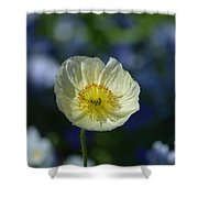 Small White Poppy Shower Curtain