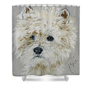 Small Wonders Shower Curtain