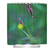 Smart Weed Shower Curtain