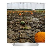 Smashing Pumpkins Shower Curtain