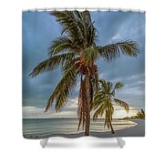 Smathers Beach Coconut Sunset Shower Curtain