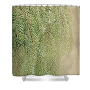 Smell The Pine Shower Curtain