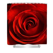 Wake Up And Smell The Roses Shower Curtain
