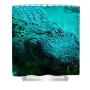 Smile Pretty Now Shower Curtain