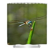 Smiling Dragonfly Shower Curtain