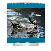 Smiling Duck Shower Curtain