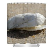 Smiling Shell Shower Curtain