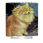 Smoke And Orange Persians Shower Curtain