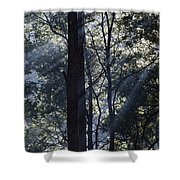 Smoke In The Air Shower Curtain
