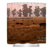 Smoke Over Lamar Valley Shower Curtain